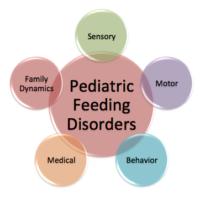 The five key domains of pediatric feeding problems.